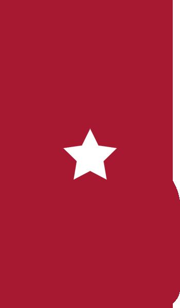 Logo Cadeaux Vins Spiritueux